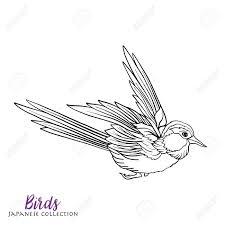 日本の鳥ストック ライン ベクトル イラスト大人のための塗り絵概要図面の着色のページ