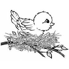 Small Picture Baby Bird Coloring Pages GetColoringPagescom