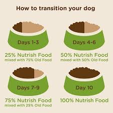 Rachael Ray Nutrish Natural Dry Dog Food Feedmyolddog Com