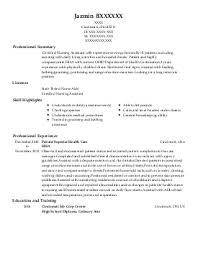 resume examples business resume examples sample resume for sample strategist magazine cover letter java programmer analyst programmer analyst resume sample