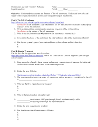3 Types Of Passive Transport Homeostasis And Transport Webquest Pages 1 3 Text