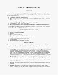 Executive Summary Resume Example Professional Template Best Resume