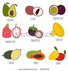 tropical fruit names. Delighful Fruit Fresh Exotic Fruits Set Hand Drawn Made In Vector And Color  Isolated For Tropical Fruit Names