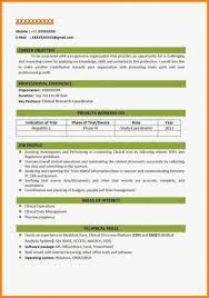 Professional Resume Format 2018