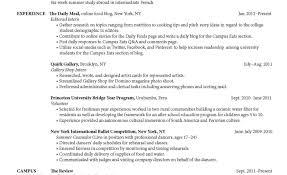 Recruiter Resume Example Resume Templates Creative