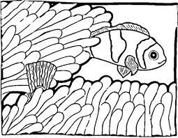 Disegno Di Il Pesce Pagliaccio Da Colorare Disegni Da Colorare E