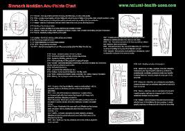 Stomach Meridian Pdf Free Download Acupuncture