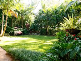 Small Picture Tropical garden Coorparoo Boss Gardenscapes