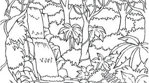 Waterfall Coloring Pages Printable Of Nature For Adults Scene