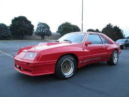 1982 Ford Mustang GT Enduro   Bring a Trailer