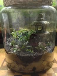 terrarium diy terrarium pebbles sand activated charcoal potting soil ferns succulents moss with a buddhist flair mini ecosystem happy habitat