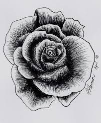 One Of Many Roses Drawn By Aramat90 On Deviantart