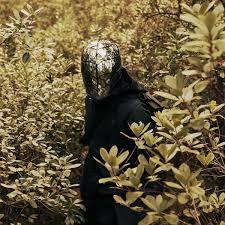 Album <b>Lumino</b> Forest , <b>Piano Novel</b> by <b>Piano Novel</b> | Qobuz ...