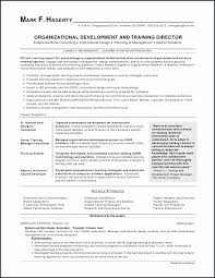 Federal Resumes Examples Mesmerizing Federal Resume Example Free Sample Resume Write Legacylendinggroup