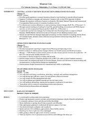 Team Operations Manager Resume Samples Velvet Jobs