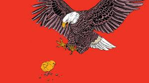 Eagles Pride Light When The National Bird Is A Burden The New York Times