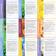 Essential Oil Benefits Chart Essential Oil Chart Printglobe Blog