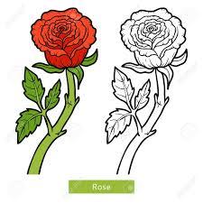 coloring book for children flower rose stock vector 64872652
