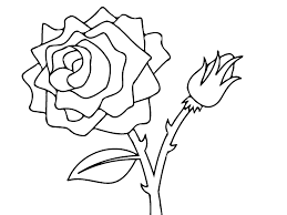coloring pages draw a rose for kids coloring pages