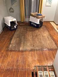 buffing vs sanding duane s floor