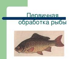 Приготовление блюд рыбы технология девочки презентации Первичная обработка рыбы