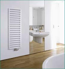 Badezimmer Heizkörper 50 Moderne Heizkörper Für Wohnraum Und