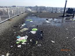 Nycha Org Chart Nycha Risks Mold Losing 24 6m In Roofing Repairs Because