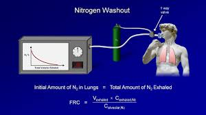 Normal Lung Volumes And Capacities Chart Lung Volumes Physiopedia