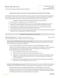 Kellogg Resume Format Magnificent Oil And Gas Resume Template And Kellogg School Of Management Essay 48