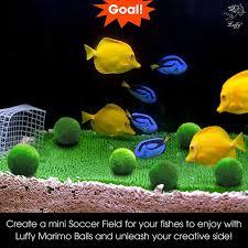 Mario Brothers Aquarium Decorations Cool Aquarium Ideas To Create Interest Well Done Stuff