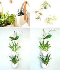 modern wall planter sit of design studio light ladder has created a collection of ceramic wall keep the succulent wall planter