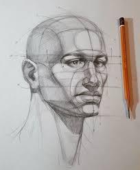 face anatomy 51137392e6d5bf3048d6acad85333bc1 jpg 1002 x 1212 human anatomy