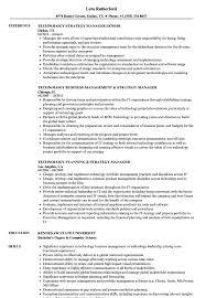 Technology Strategy Manager Resume Samples Velvet Jobs