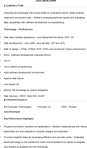 12 Java Developer Resume Template Free Download