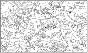 Color Chicagos Smallest Inhabitants On These Cool Coloring Book