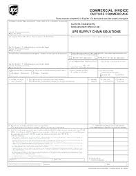 Invoice Statement Example Invoice Declaration Template