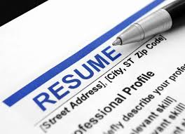 Washington DC Federal Resume Writing Service  SES Writers SES Writers