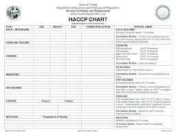 Safety Analysis Report Template Process Hazard Example Free