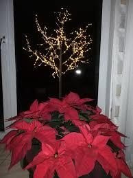 Die Adventszeit Beginnt Advent Adventszeit