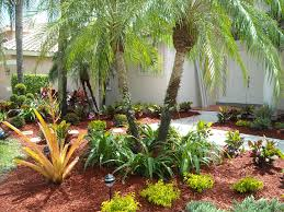Small Picture Garden Ideas In Florida Best Florida Landscaping Ideas On