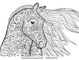 coloring pages horseshoe crab hand drawn with horses head ilration for anti stress books sheets