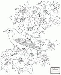 coloring pages for kids Cardinal and Rhododendron West Virginia ...