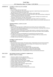 Internal Audit Analyst Resume Samples Velvet Jobs