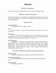 Copy And Paste Resume Templates Inspirational Standard Resume