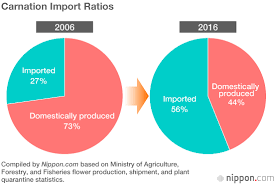 Cut Flower Chart Japan Data Imported Blooms Fill The Gap As Domestic Cut