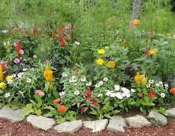 Idee Per Abbellire Il Giardino : Idee per il giardino progettazione giardini
