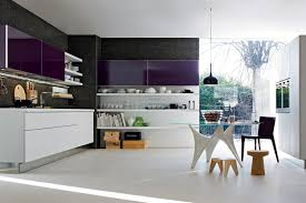 Purple Kitchen Purple Kitchens Design Ideas Zampco