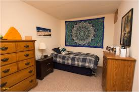 Craigslist One Bedroom Apartments Best Of Craigslist Lacrosse Wisconsin  Dells Madison Wi Apartments For Rent