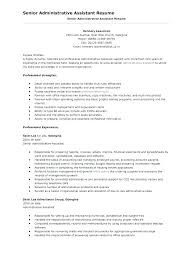 chronological resume template download free blank chronological resume templates download word examples