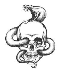 snake head side view drawing. Human Skull With Crawling Snake Illustration In Engraving Style Intended Head Side View Drawing